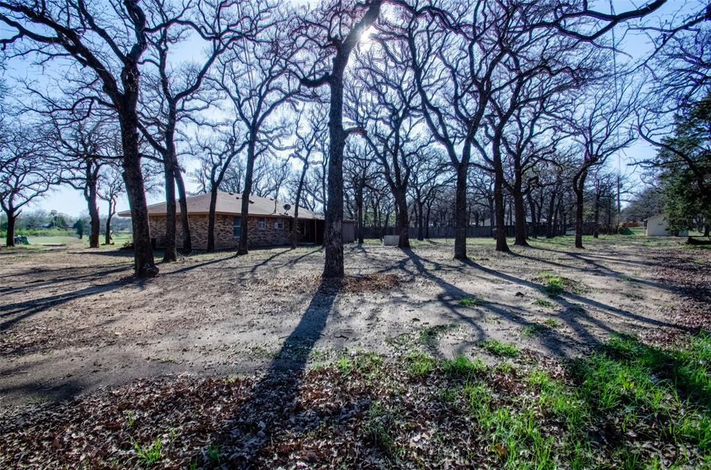 106 Fiesta Court, Chico, Texas 76431 - acquisto real estate best photo company frisco 3d listings