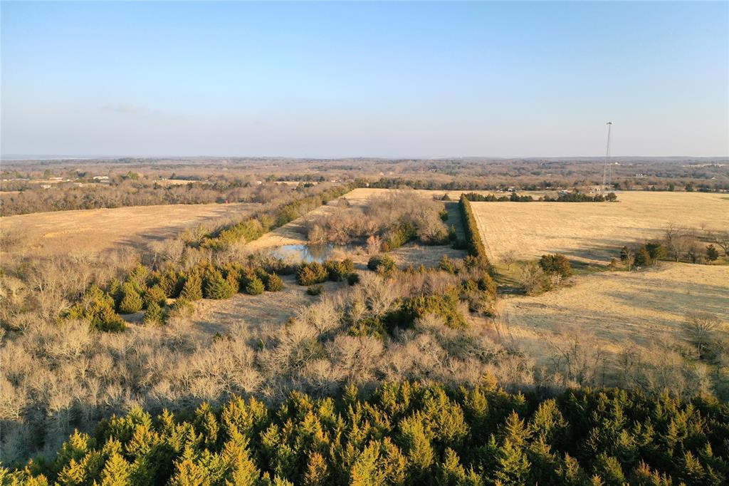 TBD E Black Diamond  Road, Pottsboro, Texas 75076 - acquisto real estate best listing agent in the nation shana acquisto estate realtor