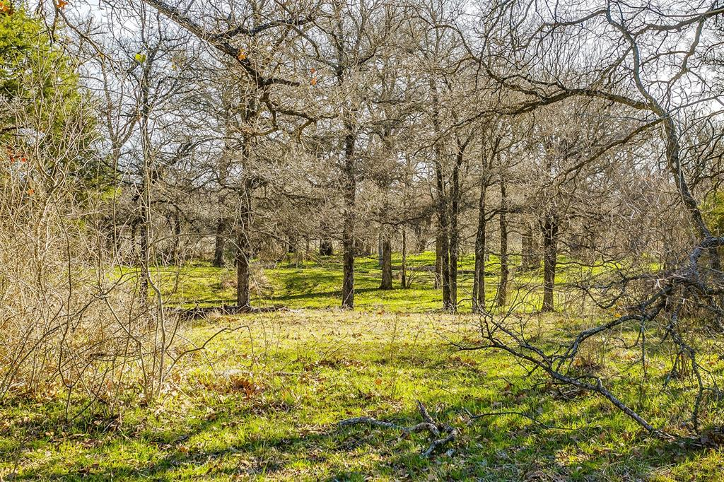 600 Wilson Bend Road, Millsap, Texas 76066 - acquisto real estate best investor home specialist mike shepherd relocation expert