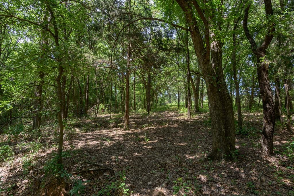 217 CR 1109 Decatur, Texas 76234 - acquisto real estate best allen realtor kim miller hunters creek expert