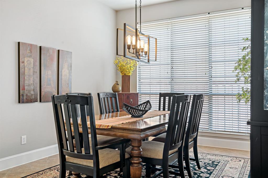 1001 Cove Meadow Court, McKinney, Texas 75071 - acquisto real estate best luxury buyers agent in texas shana acquisto inheritance realtor