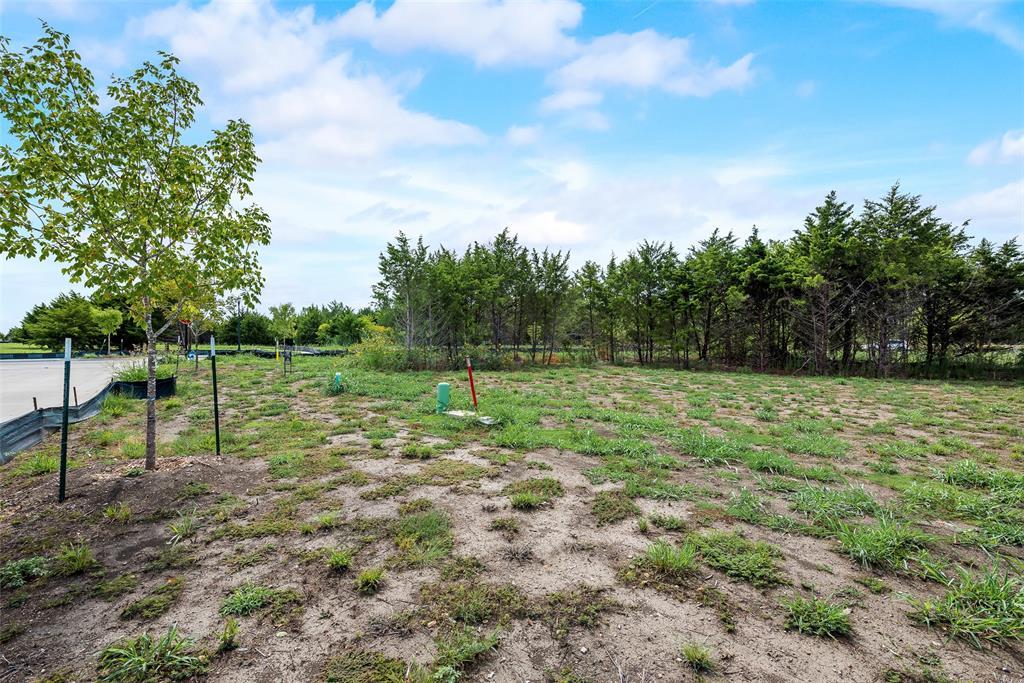 1046 Bow Street, Rockwall, Texas 75087 - Acquisto Real Estate best mckinney realtor hannah ewing stonebridge ranch expert