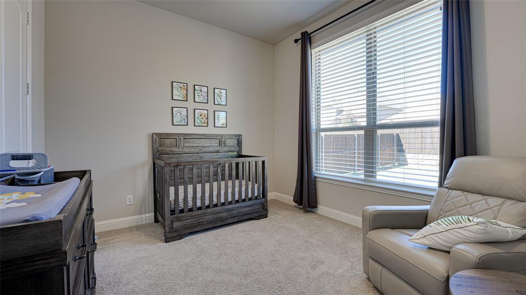 1506 Gardenia Street, Prosper, Texas 75078 - acquisto real estate best realtor foreclosure real estate mike shepeherd walnut grove realtor