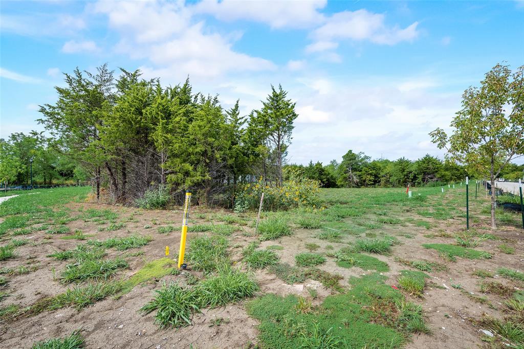1046 Bow Street, Rockwall, Texas 75087 - acquisto real estate best prosper realtor susan cancemi windfarms realtor