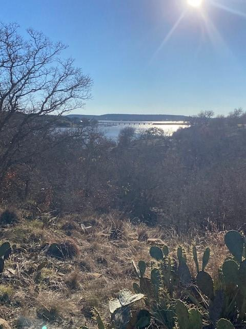 TBD Rolling Hills Road, Brownwood, Texas 76801 - acquisto real estate best the colony realtor linda miller the bridges real estate
