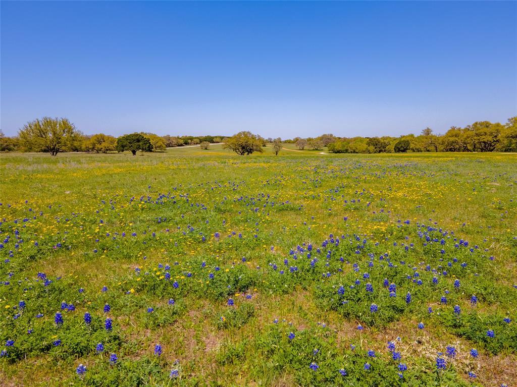 1033 County Road 305 Jonesboro, Texas 76538 - acquisto real estate best negotiating realtor linda miller declutter realtor