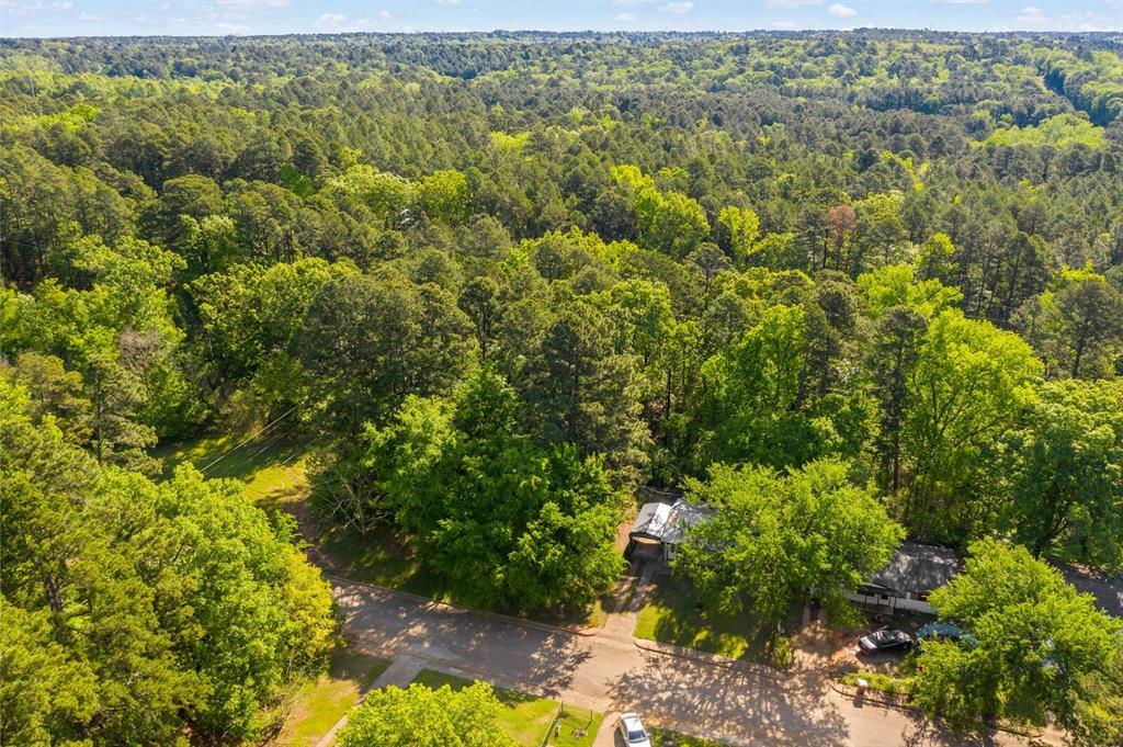 268 Crockett  Street, Lone Star, Texas 75668 - acquisto real estate best listing photos hannah ewing mckinney real estate expert