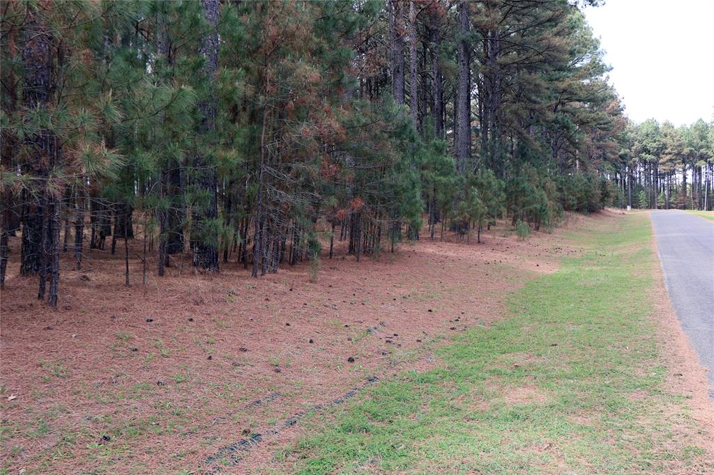 Lot 268 Waters Edge Drive, Larue, Texas 75770 - acquisto real estate best the colony realtor linda miller the bridges real estate