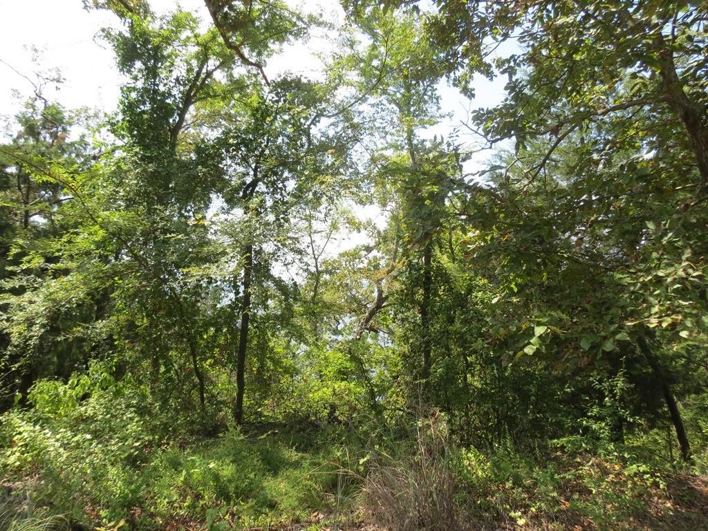 TBDLot4 CR 422 Lindale, Texas 75771 - Acquisto Real Estate best mckinney realtor hannah ewing stonebridge ranch expert