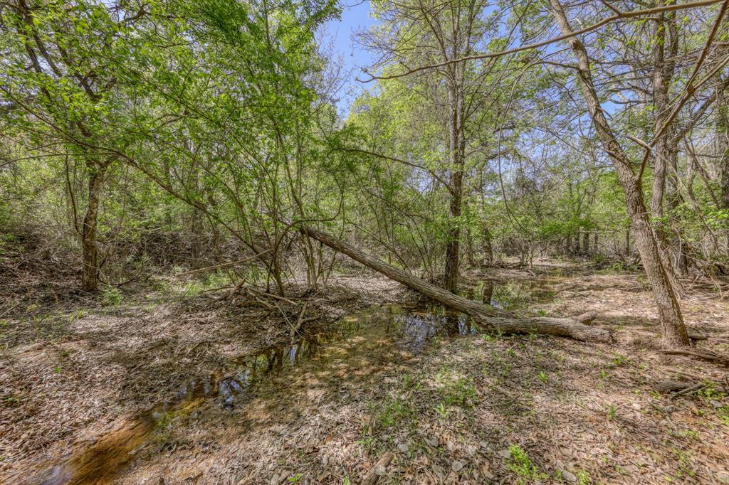 TBD 60 Bosal  Lane, Weatherford, Texas 76088 - acquisto real estate best the colony realtor linda miller the bridges real estate