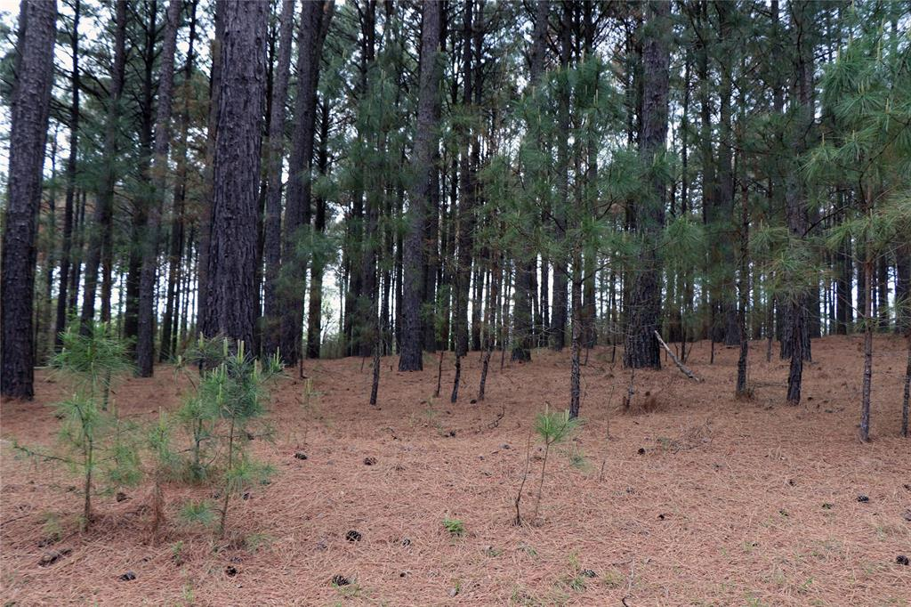 Lot 268 Waters Edge Drive, Larue, Texas 75770 - acquisto real estate best photos for luxury listings amy gasperini quick sale real estate
