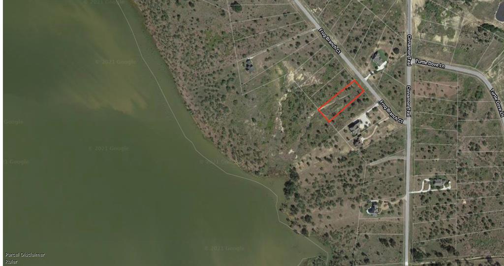 Lot 932 Frog Branch  Court, Possum Kingdom Lake, Texas 76449 - acquisto real estate best highland park realtor amy gasperini fast real estate service