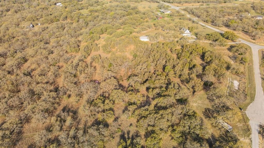 Shoshone Trail, Springtown, Texas 76082 - acquisto real estate best flower mound realtor jody daley lake highalands agent of the year