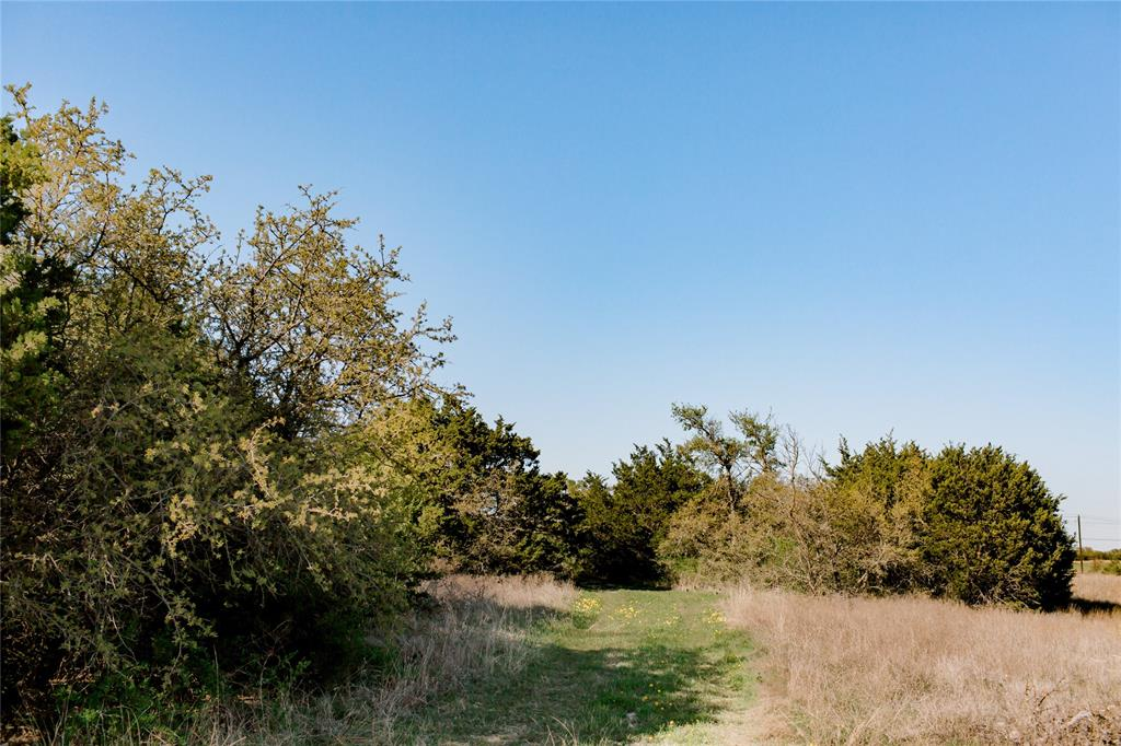 TBD- 88 Stagecoach  Trail, Weatherford, Texas 76085 - acquisto real estate best new home sales realtor linda miller executor real estate