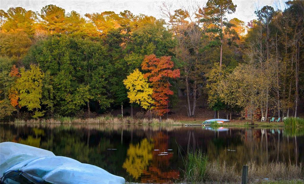 184 Salida Bend  Holly Lake Ranch, Texas 75765 - acquisto real estate nicest realtor in america shana acquisto