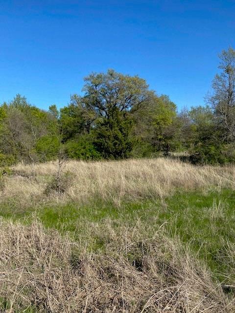 Lot 6 Bay Drive, Bridgeport, Texas 76426 - Acquisto Real Estate best mckinney realtor hannah ewing stonebridge ranch expert