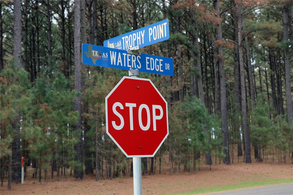 Lot 268 Waters Edge Drive, Larue, Texas 75770 - acquisto real estate best investor home specialist mike shepherd relocation expert