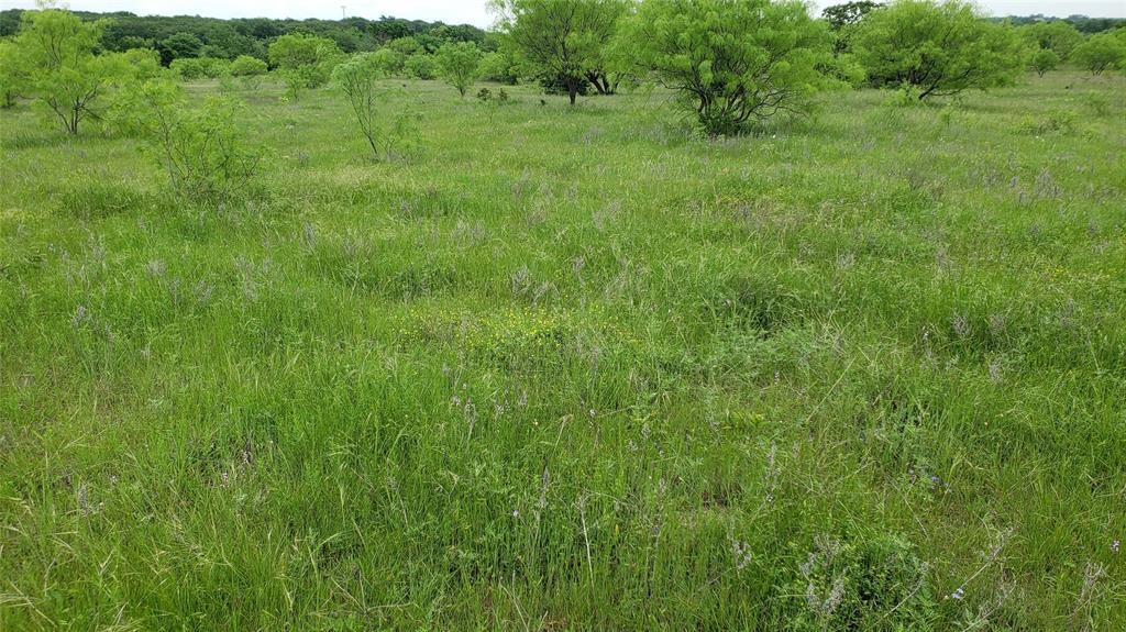 Lot 20 Ketchum  Court, Argyle, Texas 76226 - acquisto real estate best allen realtor kim miller hunters creek expert