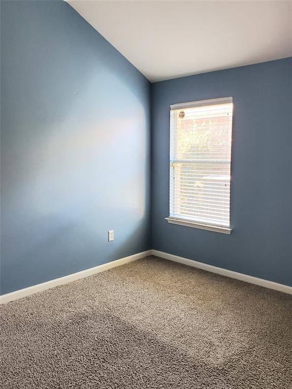 313 Magnolia  Drive, Fate, Texas 75087 - acquisto real estate best listing listing agent in texas shana acquisto rich person realtor