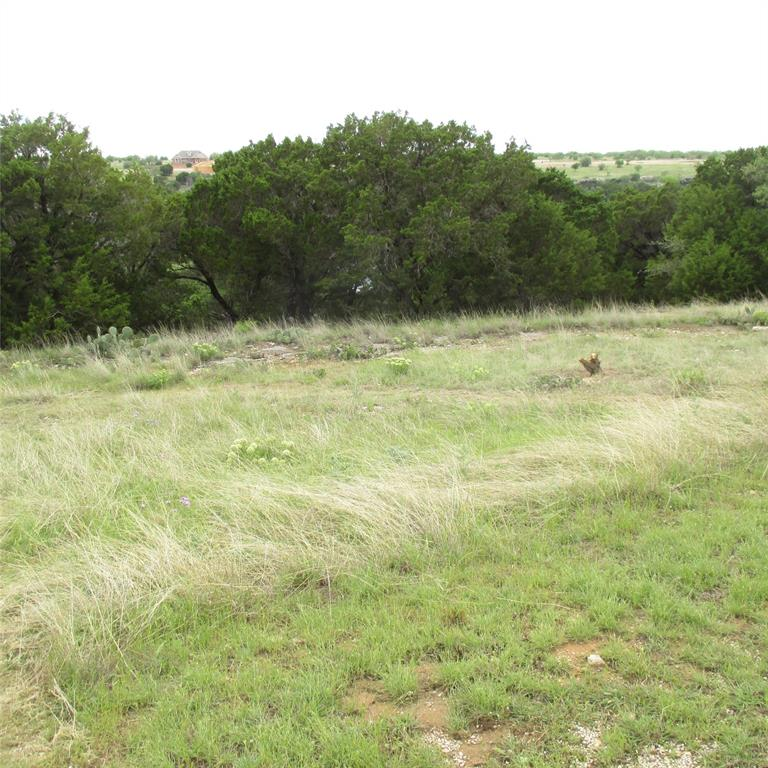 Lot 140 Melbourne  Trail, Possum Kingdom Lake, Texas 76449 - acquisto real estate best flower mound realtor jody daley lake highalands agent of the year