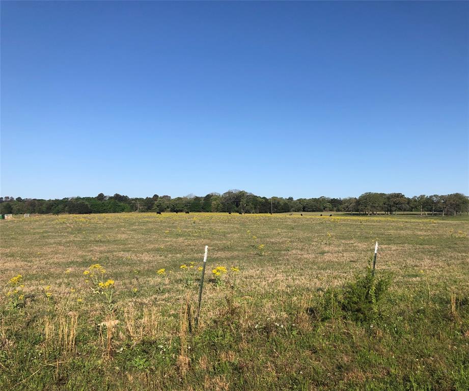 7037 County Road 3700  Athens, Texas 75752 - acquisto real estate best prosper realtor susan cancemi windfarms realtor