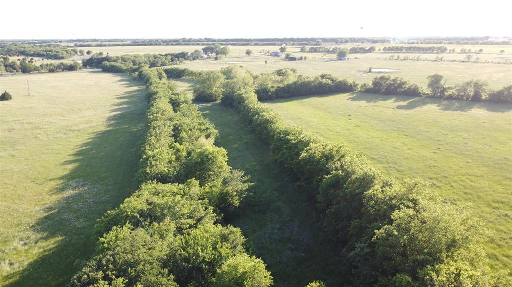 11.5 ac County Road 1051  Celeste, Texas 75423 - acquisto real estate best prosper realtor susan cancemi windfarms realtor