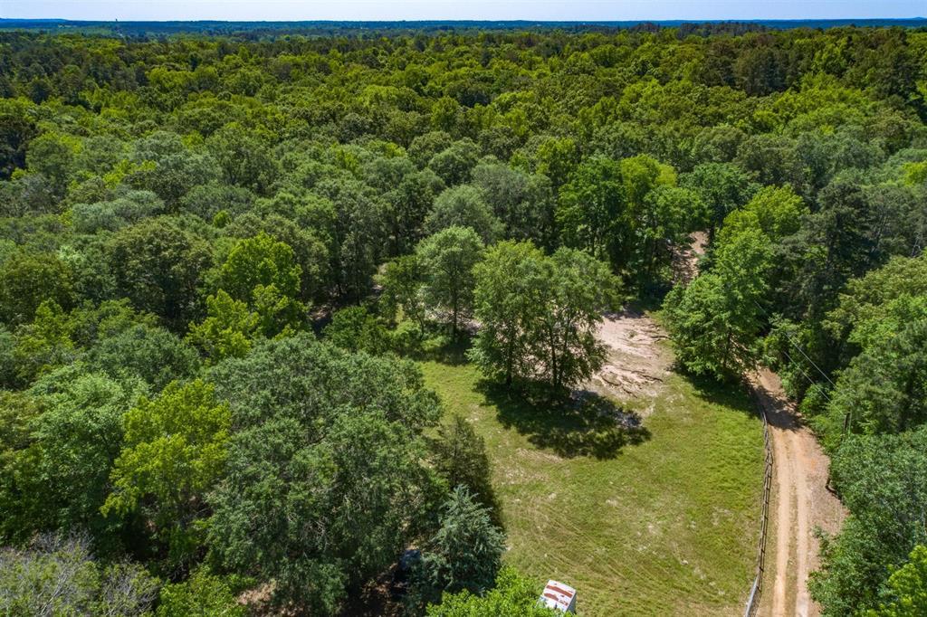 8741 Aspen  Trail, Big Sandy, Texas 75755 - acquisto real estate best listing listing agent in texas shana acquisto rich person realtor