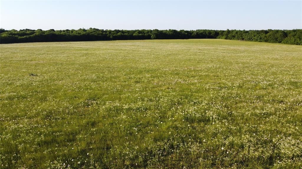 11.5 ac County Road 1051  Celeste, Texas 75423 - acquisto real estate best the colony realtor linda miller the bridges real estate