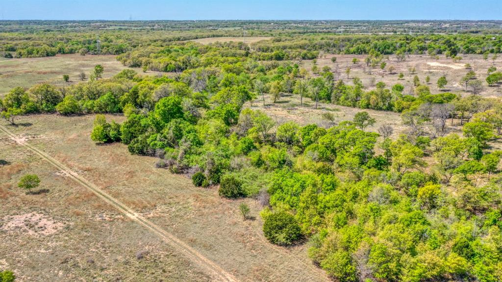 TBD 61 Bosal  Lane, Weatherford, Texas 76088 - acquisto real estate best negotiating realtor linda miller declutter realtor
