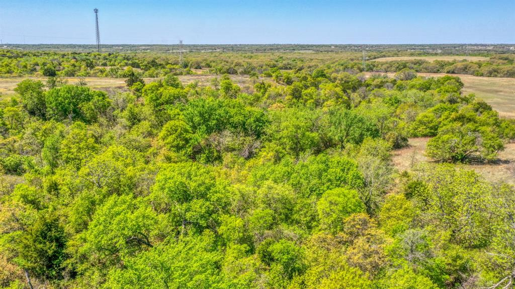 TBD 61 Bosal  Lane, Weatherford, Texas 76088 - acquisto real estate nicest realtor in america shana acquisto