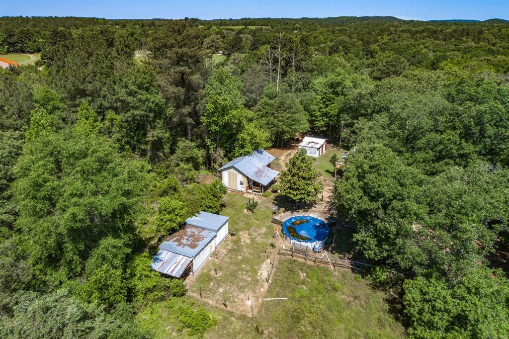 8741 Aspen  Trail, Big Sandy, Texas 75755 - acquisto real estate best listing agent in the nation shana acquisto estate realtor