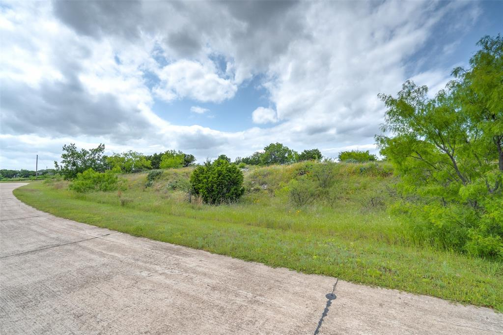 Lot218 Oak Tree  Drive, Graford, Texas 76449 - acquisto real estaet best boutique real estate firm in texas for high net worth sellers