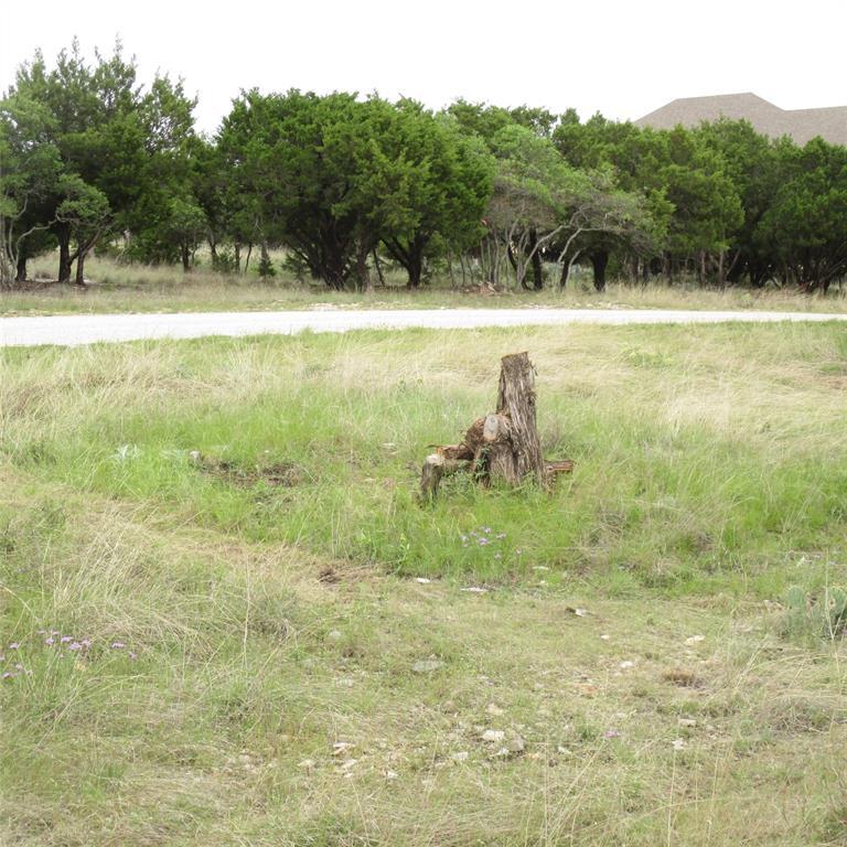 Lot 140 Melbourne  Trail, Possum Kingdom Lake, Texas 76449 - acquisto real estate best celina realtor logan lawrence best dressed realtor