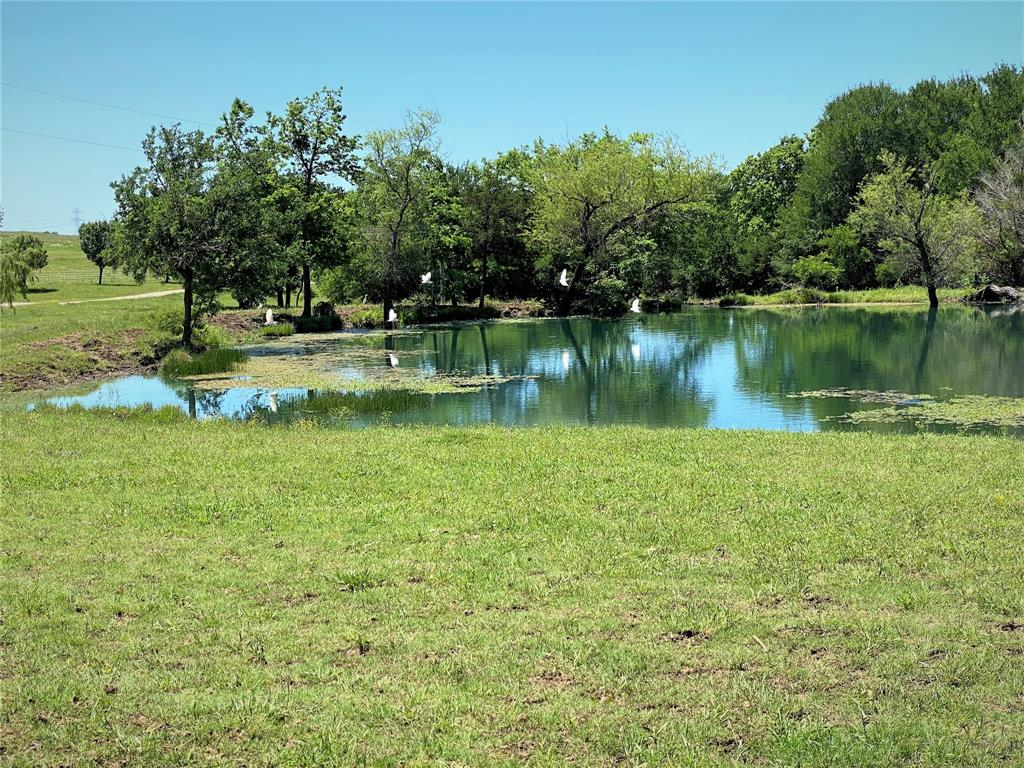 2017 Fm 1752  Savoy, Texas 75479 - acquisto real estate best real estate follow up system katy mcgillen