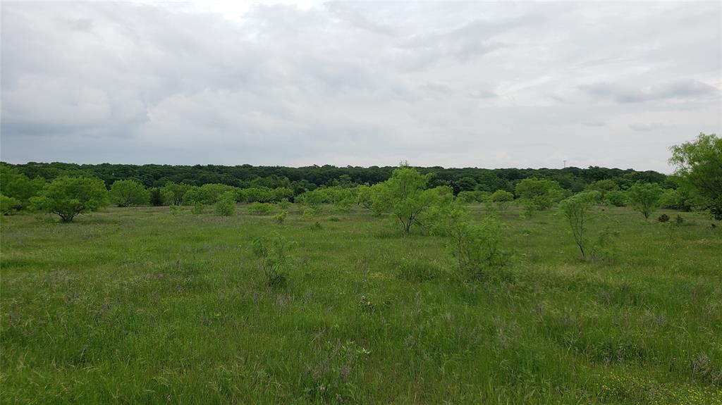 Lot 20 Ketchum  Court, Argyle, Texas 76226 - acquisto real estate best listing listing agent in texas shana acquisto rich person realtor