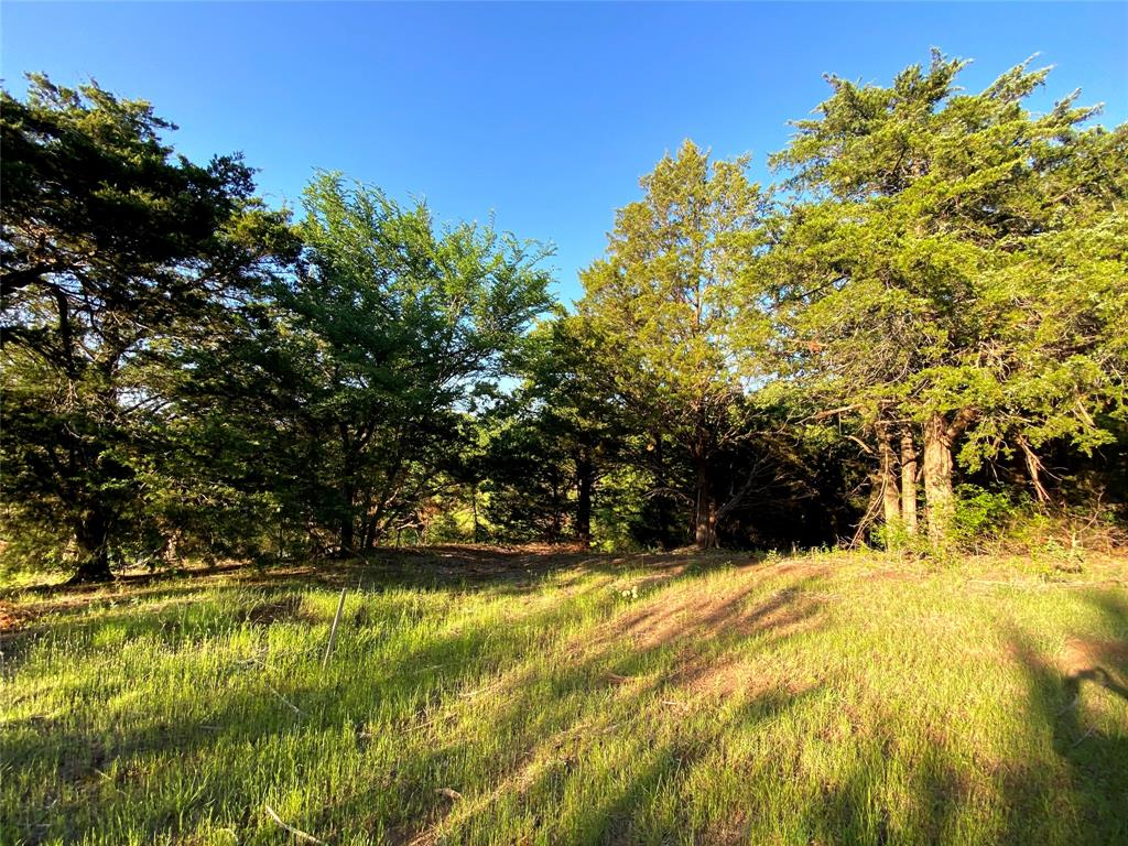 721 Briaroaks  Road, Burleson, Texas 76028 - acquisto real estate best prosper realtor susan cancemi windfarms realtor