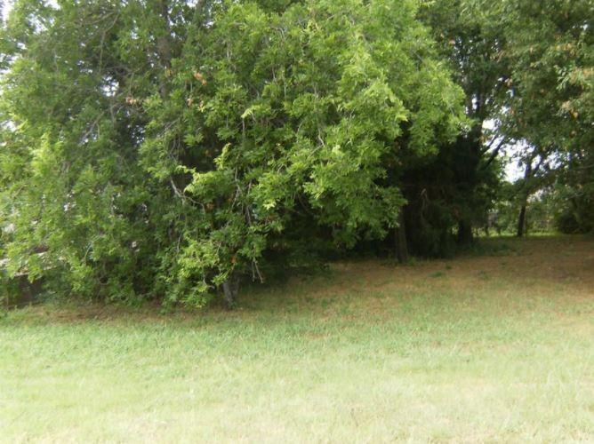 209 William Allen  Lane, Decatur, Texas 76234 - Acquisto Real Estate best plano realtor mike Shepherd home owners association expert