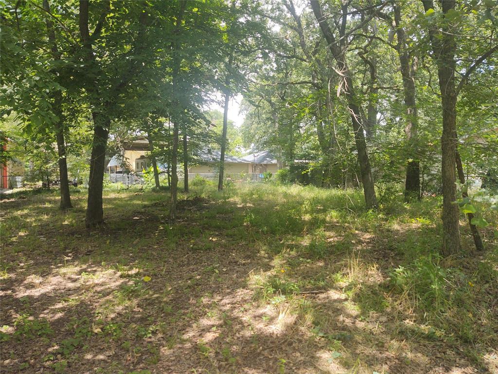 121 Hiawatha  Drive, Mabank, Texas 75156 - acquisto real estate best allen realtor kim miller hunters creek expert
