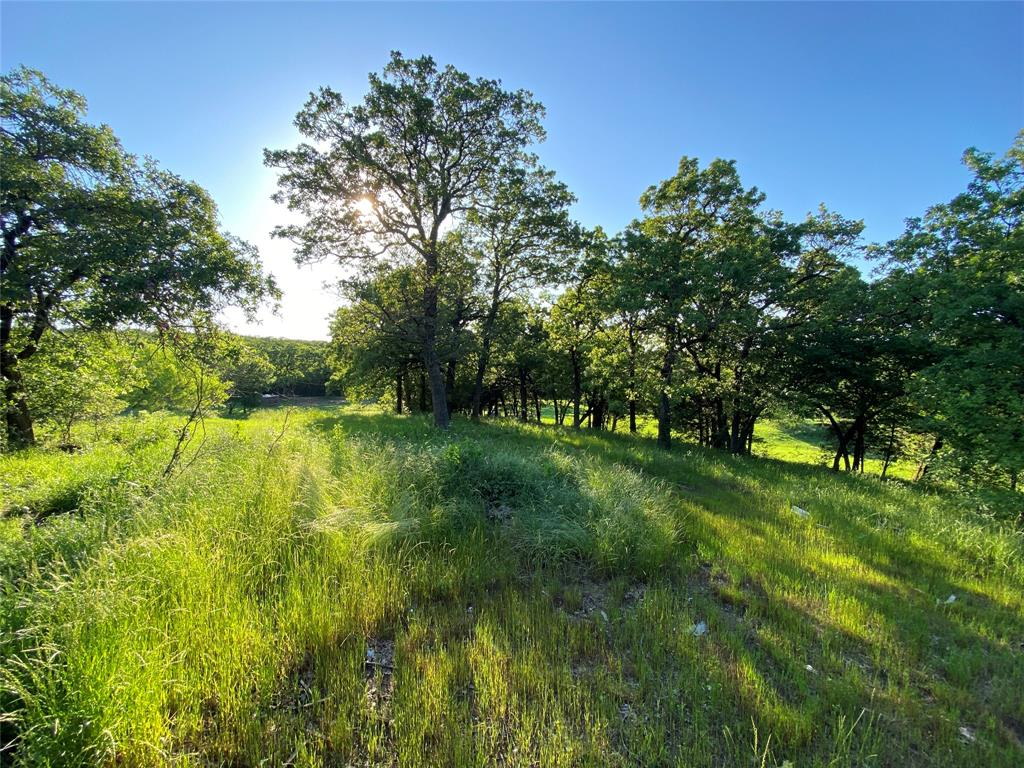 713 Briaroaks  Road, Burleson, Texas 76028 - acquisto real estate best prosper realtor susan cancemi windfarms realtor