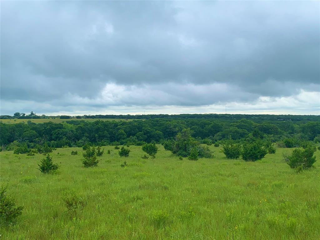 1 CR 103  Burnet, Texas 78611 - acquisto real estate best the colony realtor linda miller the bridges real estate