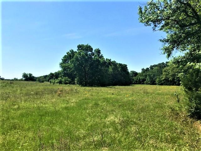 741 VZ County Road 1222 S  Grand Saline, Texas 75140 - acquisto real estate best realtor foreclosure real estate mike shepeherd walnut grove realtor
