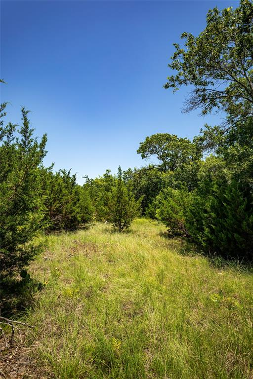 TBD County Road 2546  Meridian, Texas 76665 - acquisto real estate best highland park realtor amy gasperini fast real estate service