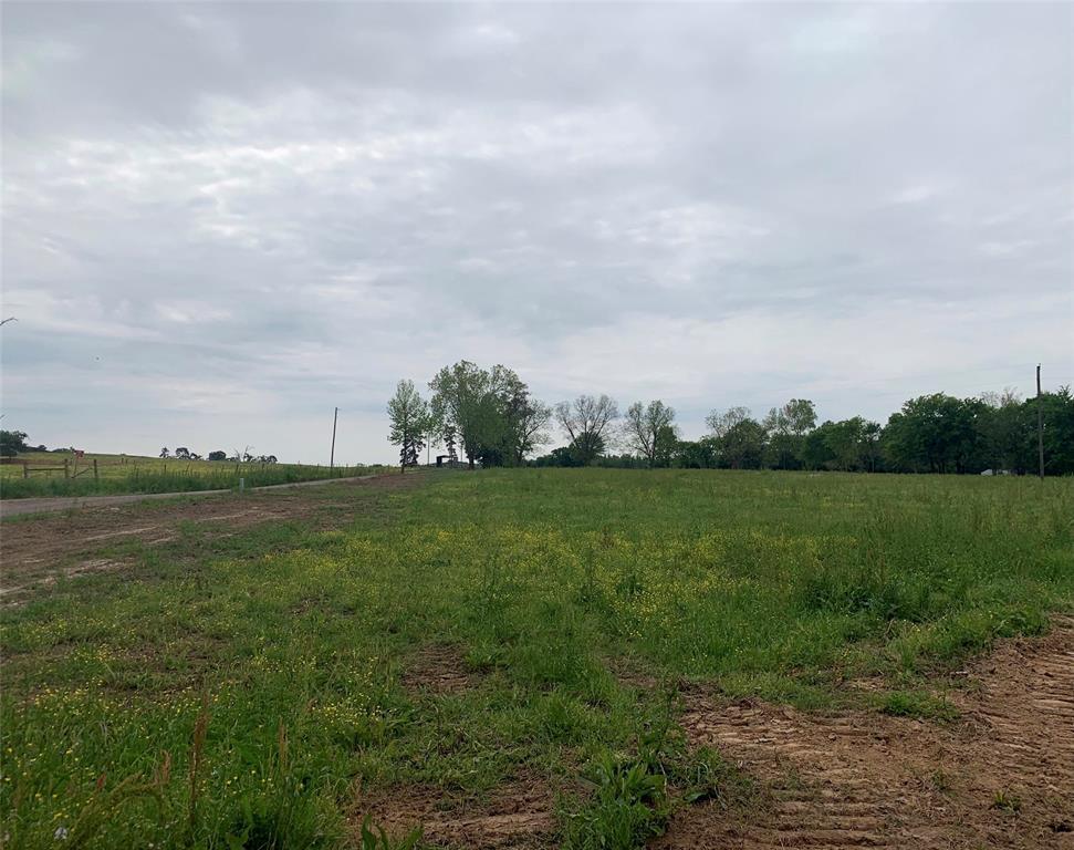 TBD CR 2393  Pickton, Texas 75471 - acquisto real estate best real estate company in frisco texas real estate showings