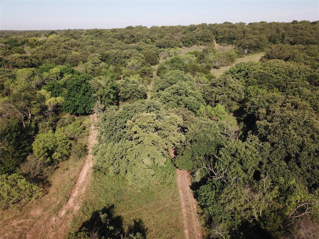151 Allen  Lane, Jacksboro, Texas 76458 - acquisto real estate smartest realtor in america shana acquisto