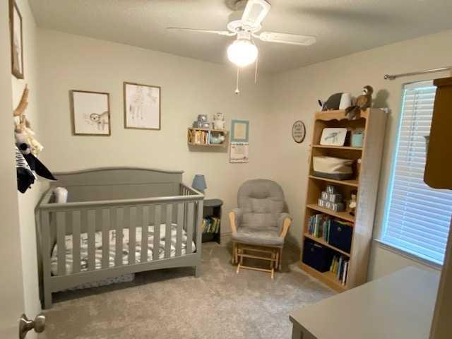 317 Joshua  Street, Denton, Texas 76209 - acquisto real estate best listing listing agent in texas shana acquisto rich person realtor