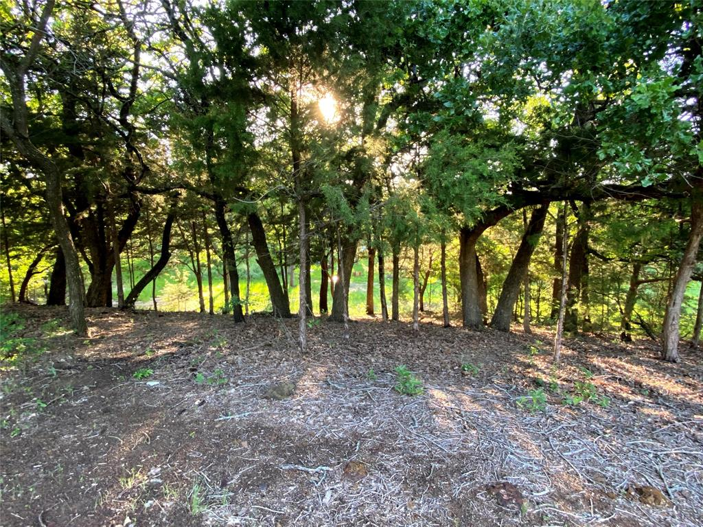 721 Briaroaks  Road, Burleson, Texas 76028 - acquisto real estate best the colony realtor linda miller the bridges real estate