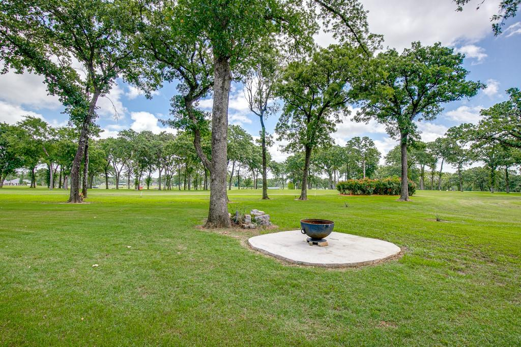 18128 Briarwood  Drive, Kemp, Texas 75143 - acquisto real estate best realtor westlake susan cancemi kind realtor of the year
