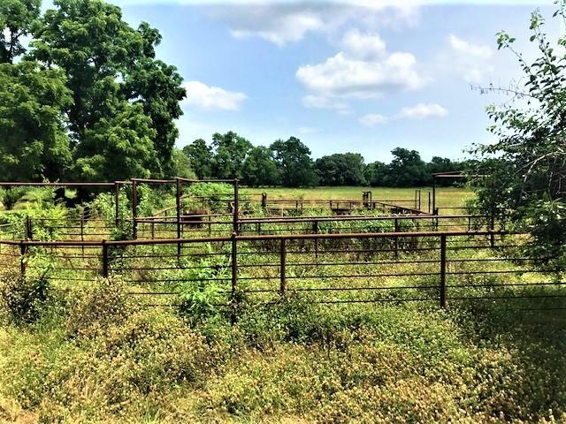 741 VZ County Road 1222 S  Grand Saline, Texas 75140 - acquisto real estate best plano real estate agent mike shepherd