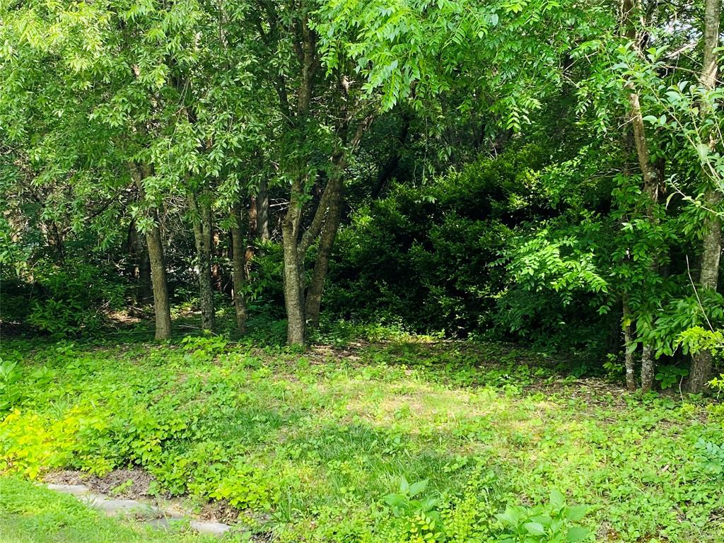 TBD Ovilla Oaks  Drive, Ovilla, Texas 75154 - acquisto real estate best the colony realtor linda miller the bridges real estate
