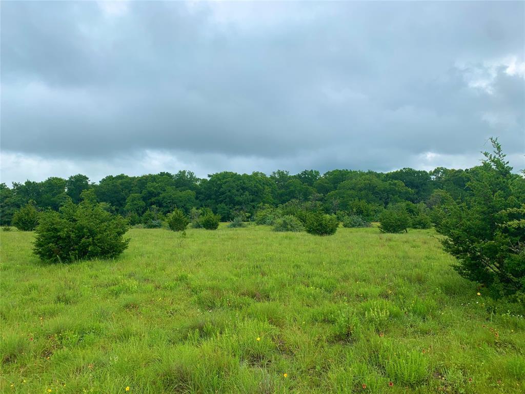 1 CR 103  Burnet, Texas 78611 - Acquisto Real Estate best plano realtor mike Shepherd home owners association expert